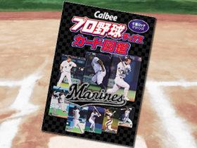 「Callbee プロ野球チップスカード図鑑 千葉ロッテマリーンズ」