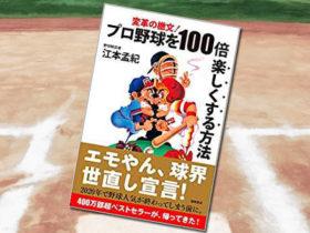 「プロ野球を100倍楽しくする方法 変革の檄文!」