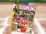 「がっつり! プロ野球(21)2018年 11/15号」