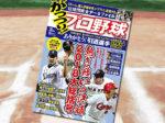 「がっつり! プロ野球(22) 2018年12/31号」
