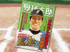 「野球太郎 No.029 2018ドラフト総決算&2019大展望号」