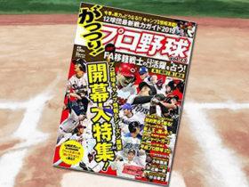 「がっつり!プロ野球 (23) 2019年3/15号」