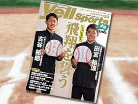 「Yell sports 千葉 Vol.23」