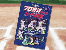 「Callbee プロ野球チップスカード図鑑 中日ドラゴンズ」