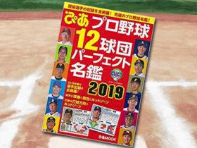 「プロ野球12球団パーフェクト名鑑2019」