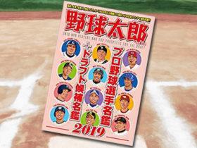 「野球太郎 No.030 プロ野球選手名鑑+ドラフト候補選手名鑑2019」