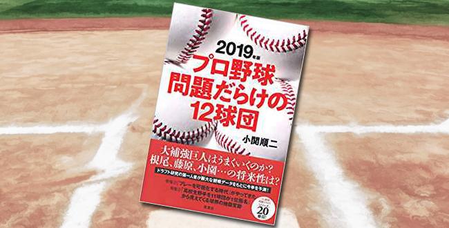 「2019年版 プロ野球問題だらけの12球団」
